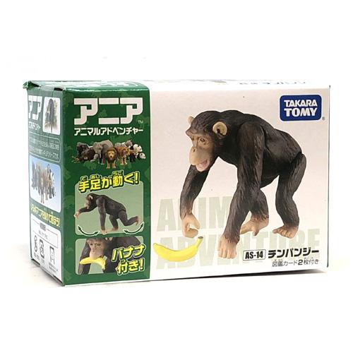 as-14アニア【チンパンジー】