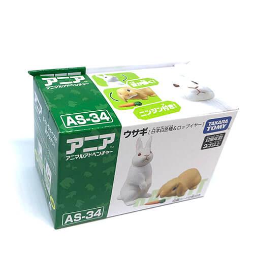 as-34アニア【ウサギ(日本白色種&ロップイヤー】