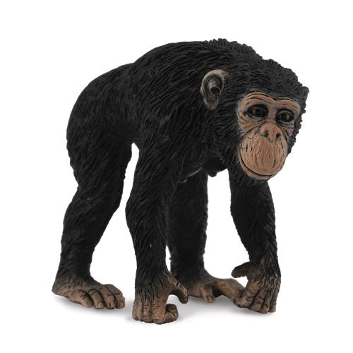 88493 Collecta【チンパンジー(メス)】