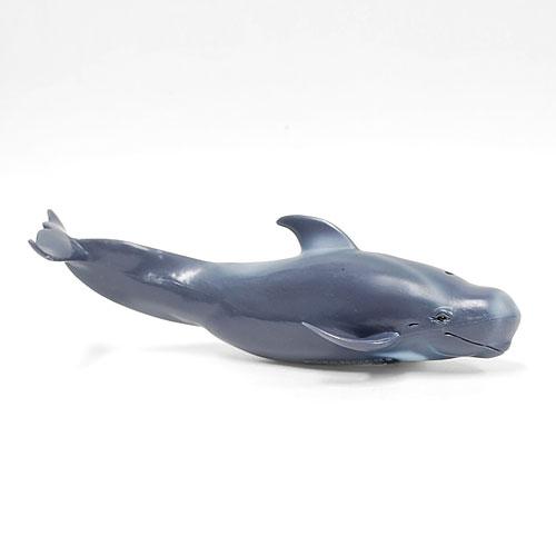 88613 Collecta【ゴンドウクジラ】