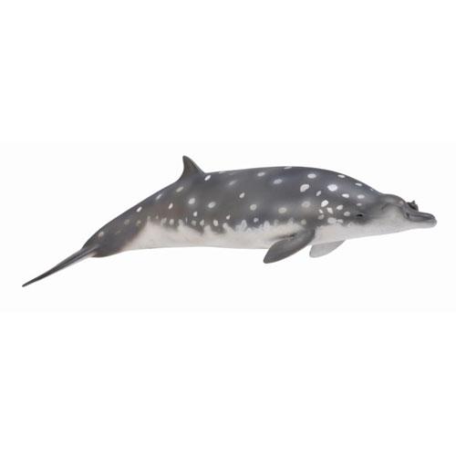 88761 Collecta【コブハクジラ】