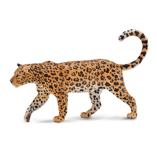 88866 Collecta【ヒョウ】