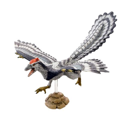 Favorite【アーケオプリテクス/始祖鳥 ソフトモデル】