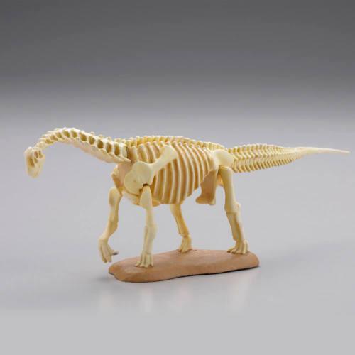 kymqno1902 miniQ 恐竜発掘記 恐竜造形大博覧会 第8弾 カマラサウルス骨格【アイボリー】