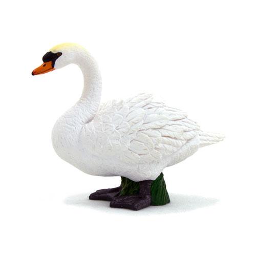 387065 mojo【白鳥】