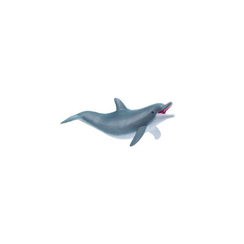 Papo【遊んでいるイルカ】