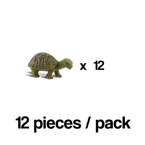 100173_12 Safari【ミニ リクガメ(12個)】