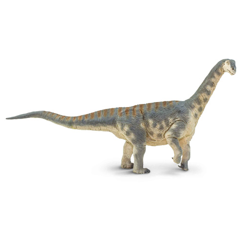 Safari【WSカマラサウルス】