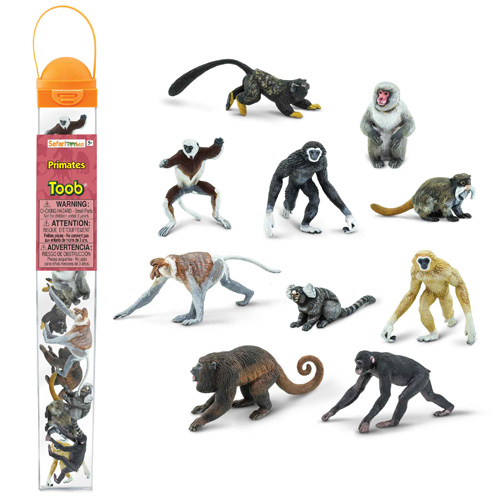 100323 Safari【霊長類チューブ】