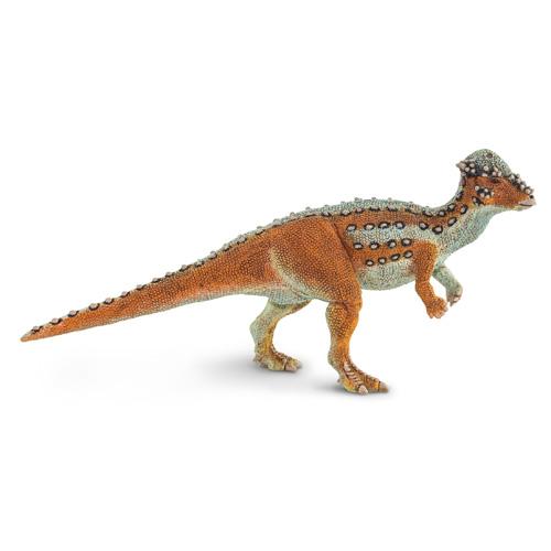 100350 Safari【パキケファロサウルス】