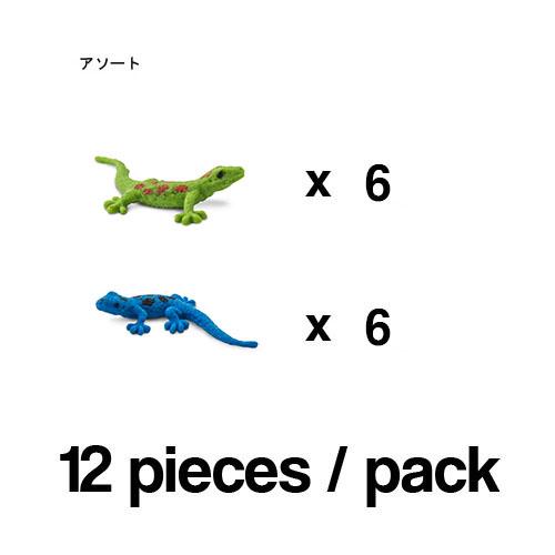 100513_12 Safari【ミニ  ヒルヤモリ(12個)】