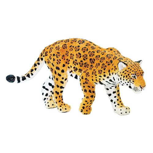 227729 Safari【ジャガー】