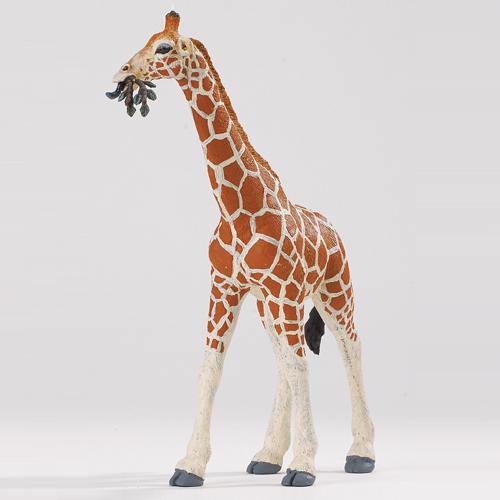 268429 Safari【アミメキリン(親)】
