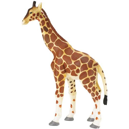 270629 Safari【キリン(親)】