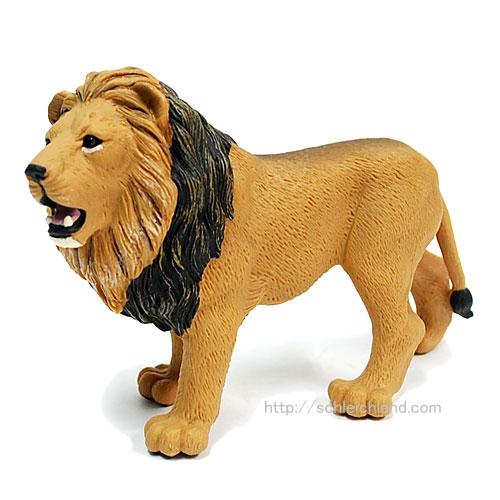 290229 Safari【アンゴラライオン(オス)】