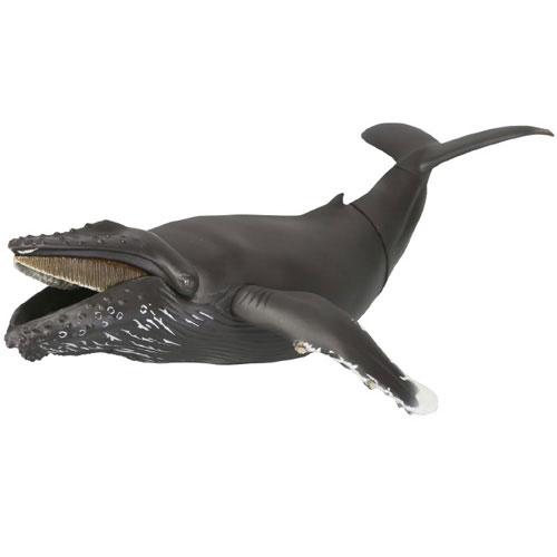 STB013A 海洋堂【ザトウクジラ】
