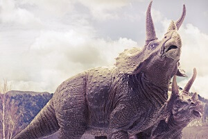 <span>徳田竜司さんの動物・恐竜写真特集</span>