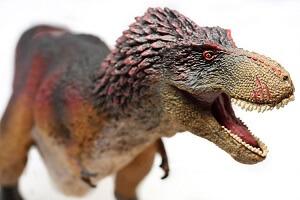 <span>ティラノサウルス特集</span>